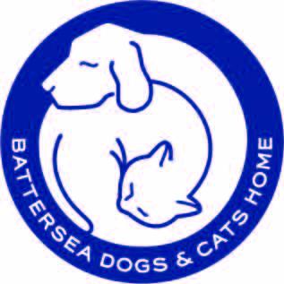 bd&ch_logo_001 - EDITED