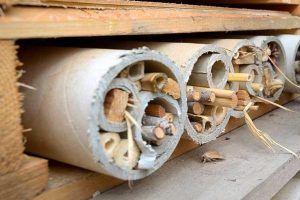 image of a bee hotel